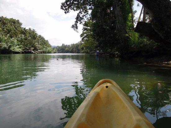 Loboc River Resort: River Kayaking