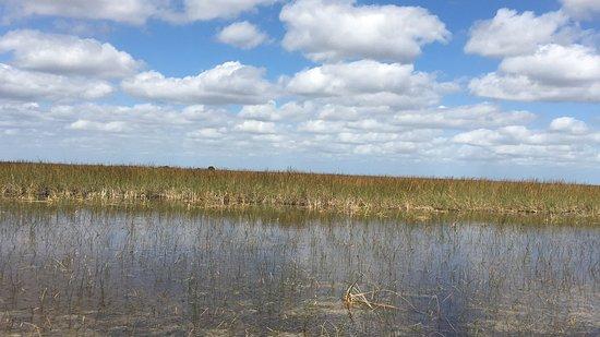 Weston, FL: Sawgrass...