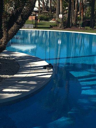 Kempinski Hotel Bahia: photo1.jpg