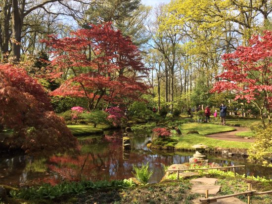 Beautiful view with vibrant colors picture of japanese for Japanese garden colors