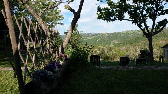Roccalbegna, Italy: giardino