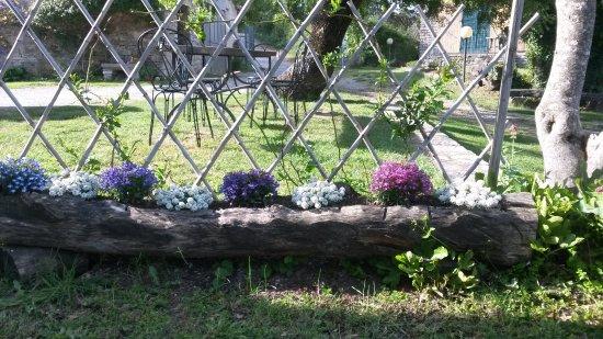 Agriturismo Poderino: giardino