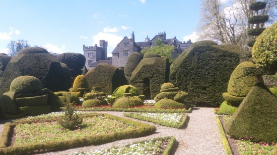 Kendal, UK: Immaculate topiary and blocks of colourful pansy filled beds