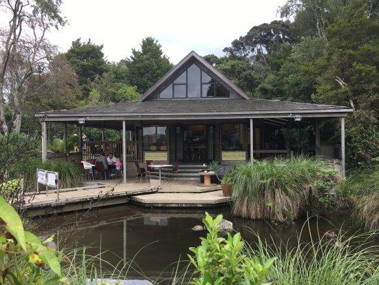North Island, Neuseeland: The cafe
