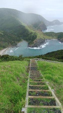 Hiking New Zealand: On our walk near Cape Reinga