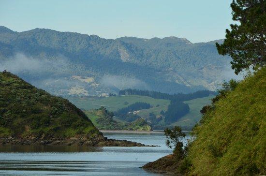 Hiking New Zealand: Hokianga Harbour