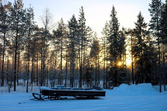 Arctic SnowHotel & Glass Igloos: 2017-01-23-16-02-50_large.jpg