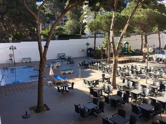 Hotel Saint Dominique Tripadvisor