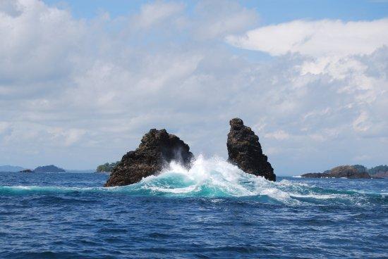 Foto de Golfo de Chiriqui National Park