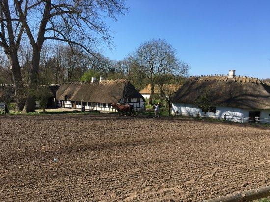 The Funen Village: Skansen w Odense - orka.