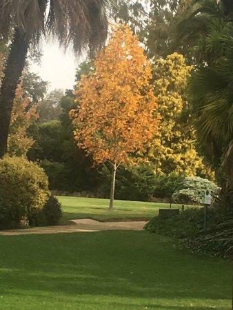 Albury Botanic Garden : photo0.jpg