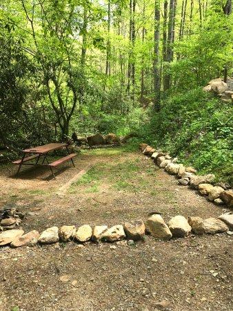Moonshine Creek Campground: Site 60
