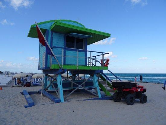 Four Points by Sheraton Miami Beach Photo