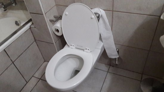 BON Hotel Riviera on Vaal: Trying to use loo roll