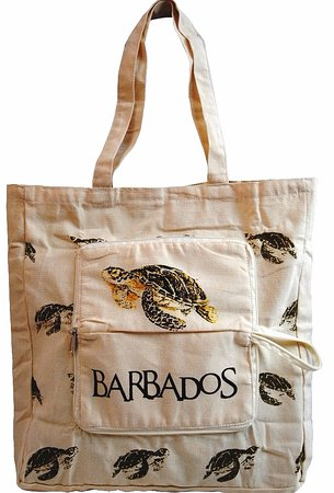 Holetown, Barbados: Keep one of these always with you.  Folds &  zips up.