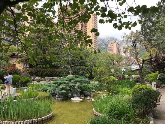 Japanese Gardens : photo0.jpg