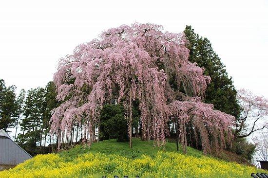 Nihonmatsu Foto