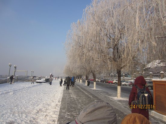 Jilin, China: Freezing cold and beautiful hoarfrost trees