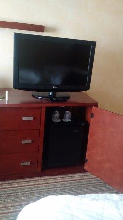 Clive, IA: TV and fridge
