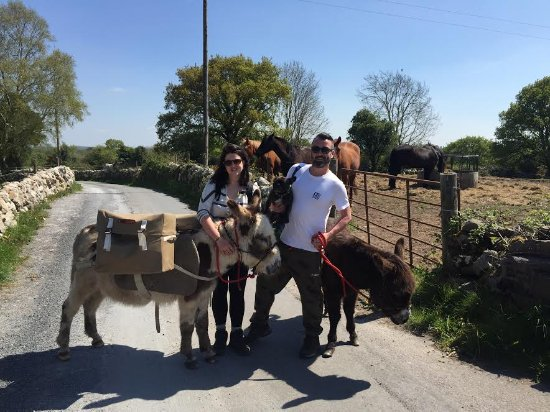 Loughrea, Ireland: Dave & Kat on their return from their trek with Griff, Hero & John Willy.