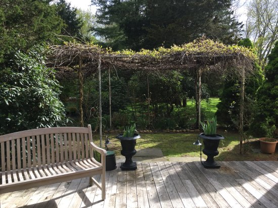 East Marion, NY: Relax outside by a lovely grape arbor surrounded by tropical flora and greenery.