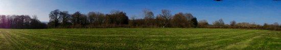 Ockley, UK: Campfield 1