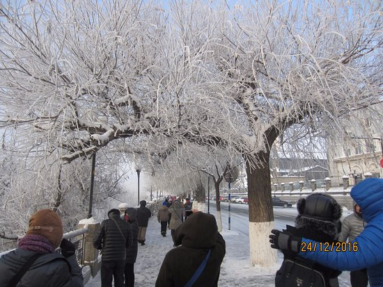 Side view with hoarfrost trees in Jilin