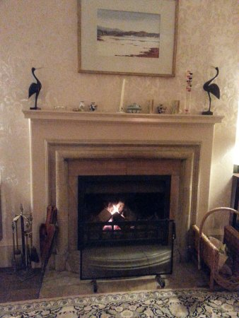 Kilmelford, UK: Fireplace in the parlour/breakfast room we had full access to. It was lovely!