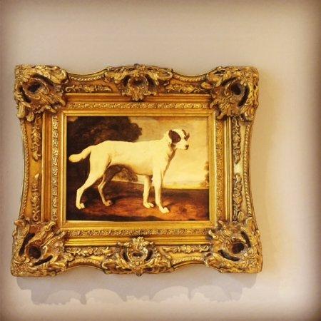 Boyne Valley Hotel & Country Club: I cani della Hall