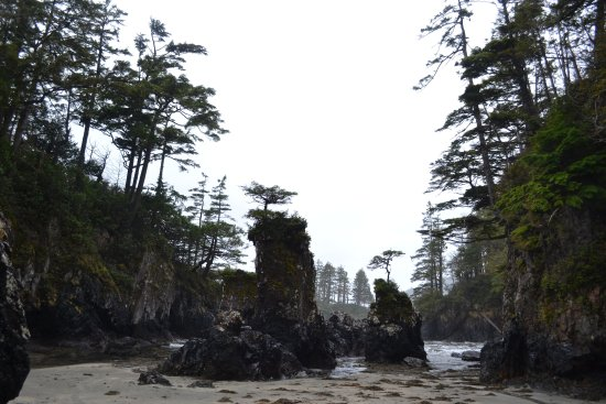 Port Hardy, Canada: The majestic sea stacks at San Josef Bay.