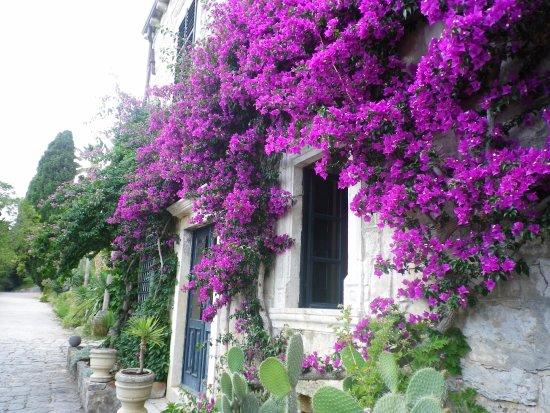 Trsteno, Croacia: Entrada a la casa del arboretum