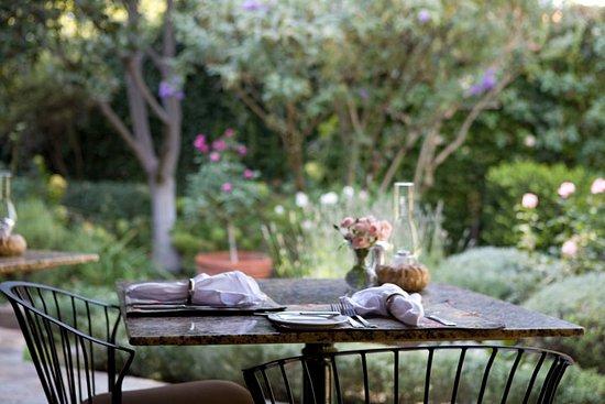 Ojai, CA: our garden