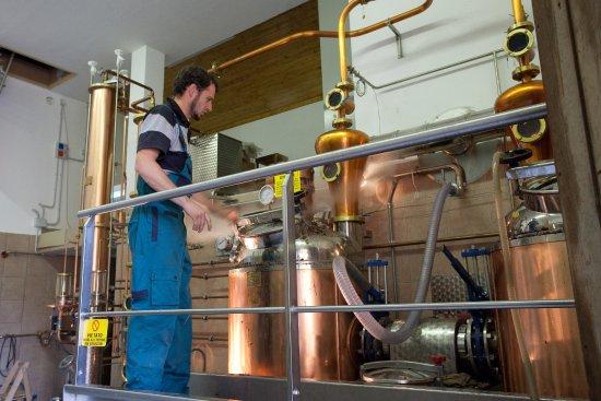 Revo, Italien: Claudio durante la distillazione