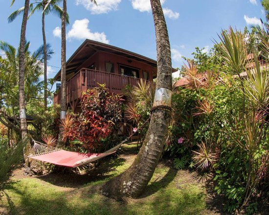 The bali house and bali cottage at kehena beach hawaii for Cottage bali