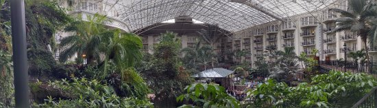 The Inn at Opryland, A Gaylord Hotel: The real Gaylord Resort as comparison