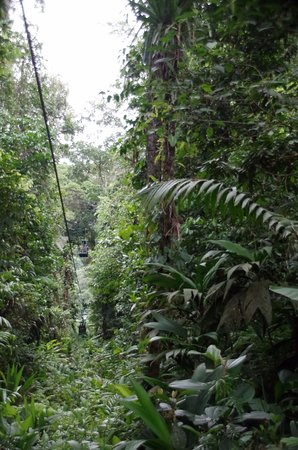 Braulio Carrillo National Park, Costa Rica: Tram goes through the rainforest