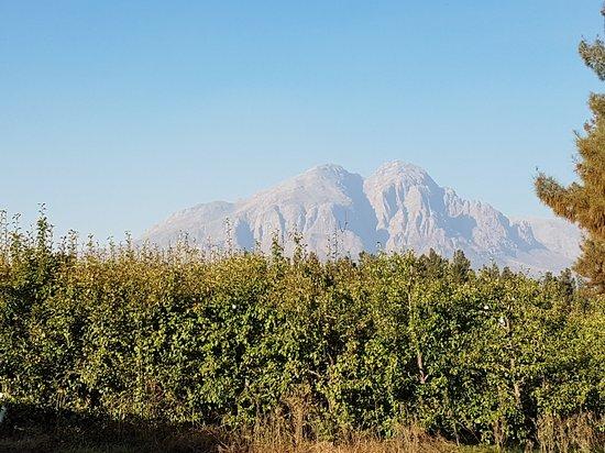 Wolseley, Republika Południowej Afryki: 20170504_161954_large.jpg