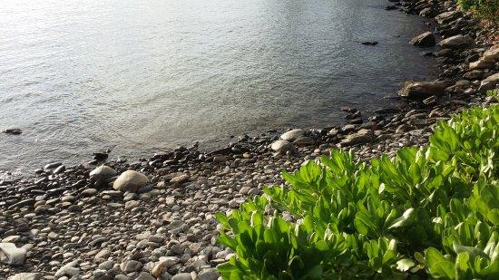 Honokeana Bay: 20170504_180842_large.jpg