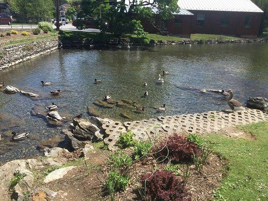 Boiling Springs, Пенсильвания: photo0.jpg