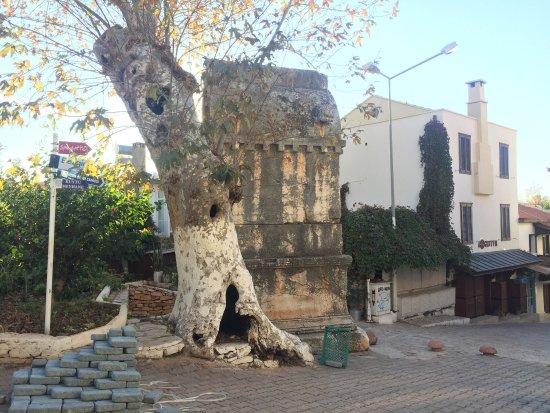 AslanlıLahit: Обязательно к посещению. Огромный саркофаг, стоит по середине Каша. Каждая сторона саркофага укр