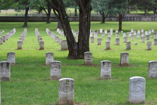 Murfreesboro, TN: graves.