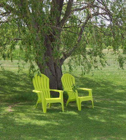 Manitowaning, Canadá: Enjoy the shade of the Weeping Willow tree.