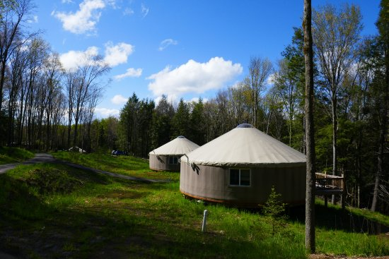 Frostburg, MD: Eight yurts nicely spaced