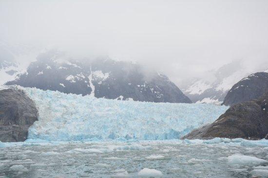 Petersburg, AK: LeConte Glacier