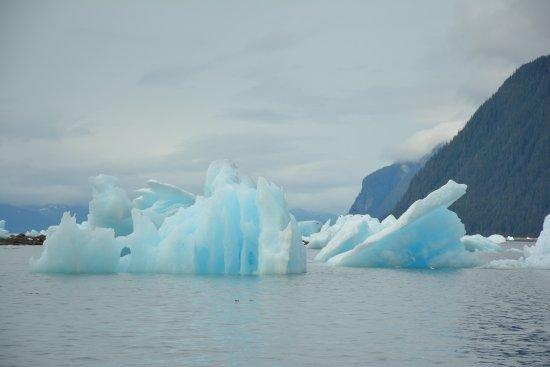 Petersburg, AK: Icebergs