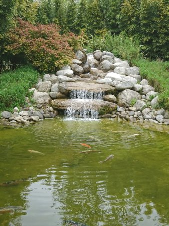 Un Bassin Et Cascade Photo De Les Jardins Aquatiques Le Parc