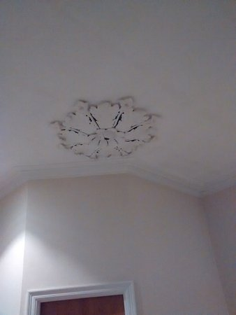 The Park Hotel Ornate Plaster Ceiling