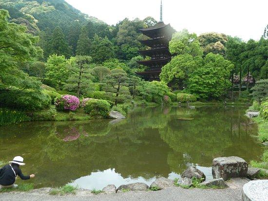 Ruriko Temple Five-Story Pagoda : 池の後方が塔でそばまで行く事が出来ますが 中に入る事は出来ません。