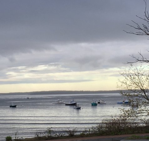 Lincolnville, ME: Despite the gray sky, the view is something to enjoy.Reserve your rocker on our front porch toda