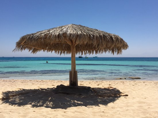 Ilios Dive Club: VIP snorkelling trip